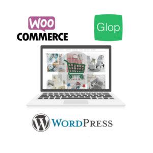Modulo Software TPV Tienda Online Woocommerce